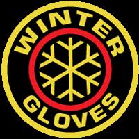 DEMO Winter gloves